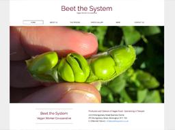 screenshot - beetthesystem.co.uk